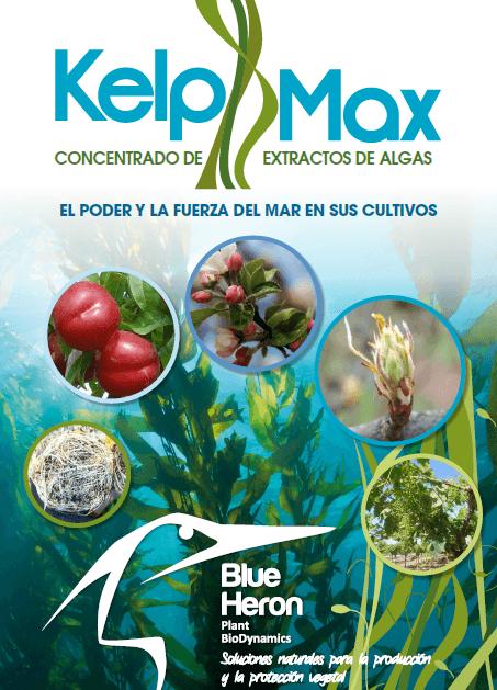 KelpMax Ficha Técnica y Ensayos